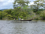 Amazon Native Fishing Canoes