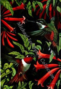 Humming Birds Menu Cover